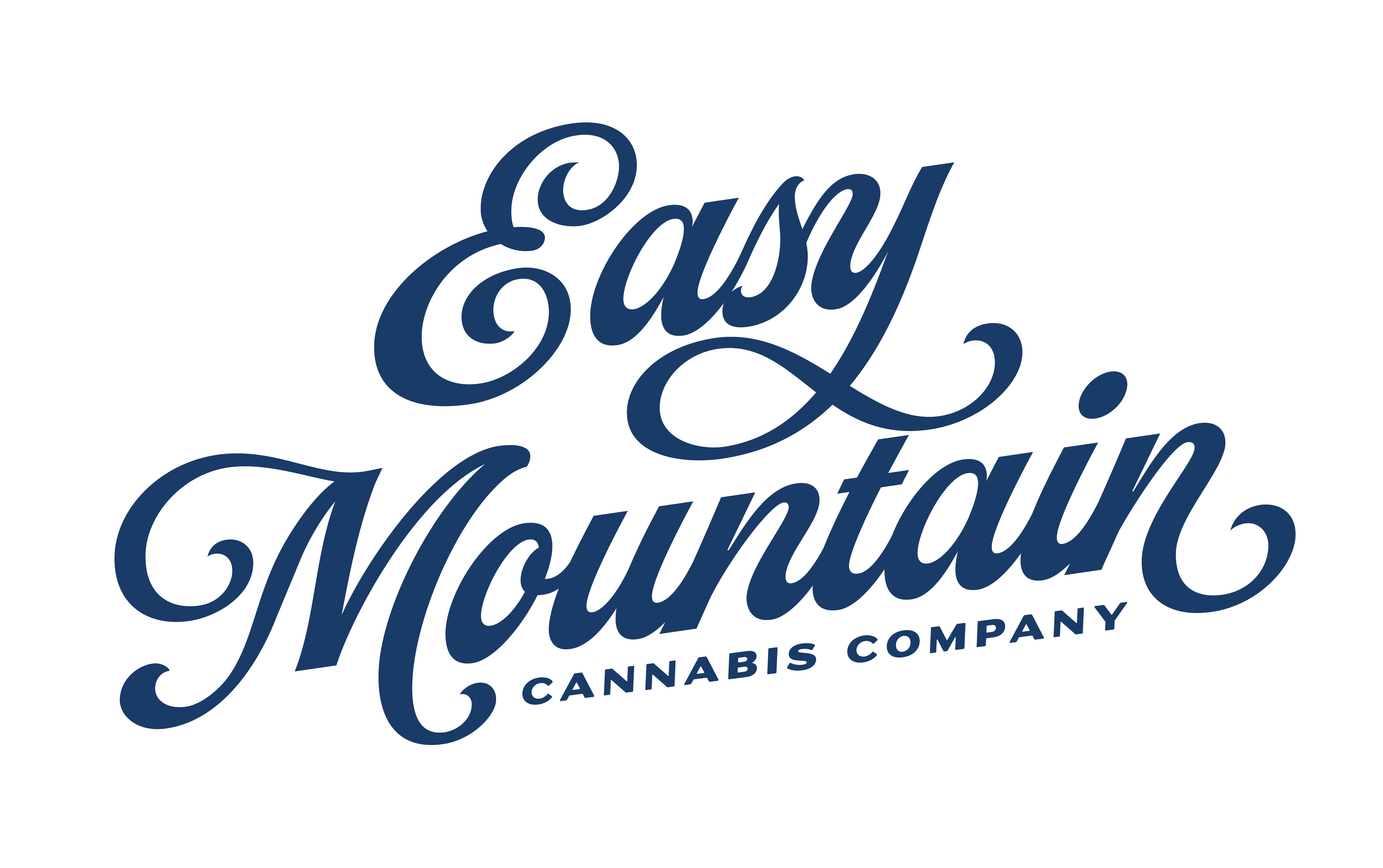 Easy Mountain logo